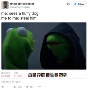 evilkermit