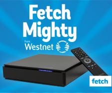 fetch-mighty-blog-wn