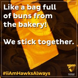 DieHardHawk_Hawks_B